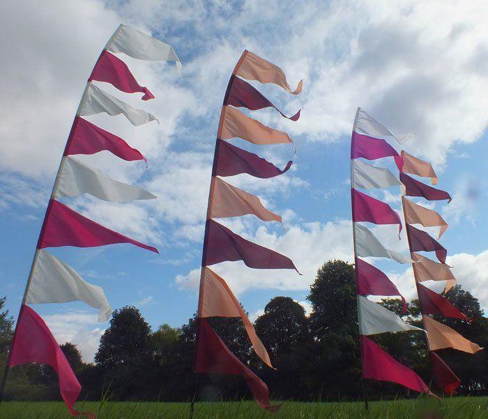 Carolina Festival Flags