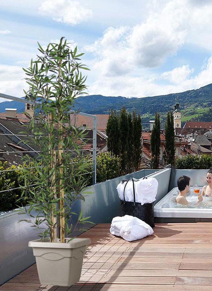 Siepi Da Vaso Per Terrazzo. Stunning Fioriera Separ Giardino Con ...