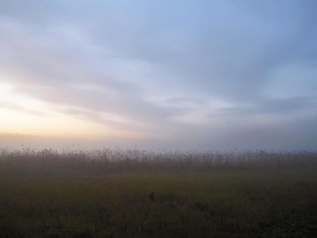 Seasons - Autumn - White Note Oy - Picasa-verkkoalbumit
