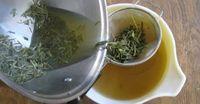 Como preparar o álcool de alecrim e castanha-da-índia para tratar dores nas articulações e varizes | Cura pela Natureza