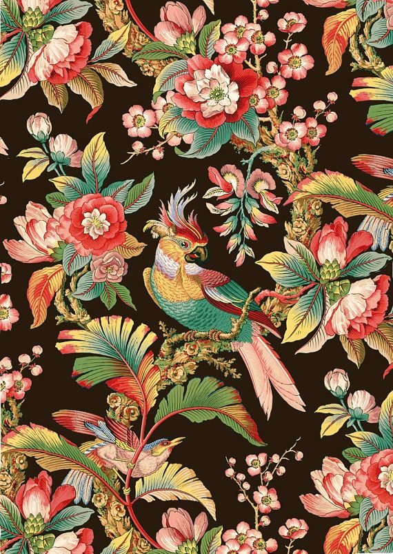 Antique french chinoiserie tropical bird tropical floral wallpaper black background illustration