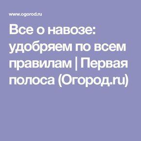Все о навозе: удобряем по всем правилам | Первая полоса (Огород.ru)