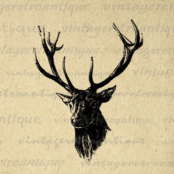 Printable Image Antique Deer Digital Download Deer with Antlers Illustration Graphic Vintage Clip Art. Printable high quality digital graphic from vintage artwork for making prints, iron on transfers, papercrafts, and other great uses. Personal or commercial use. This graphic is high quality at 8½ x 11 inches large. Transparent background version included with every graphic.