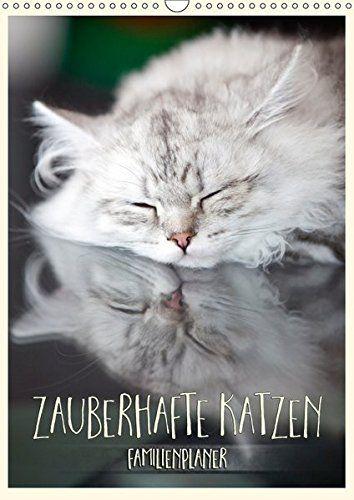 Zauberhafte Katzen - Familienplaner (Wandkalender 2017 DI... https://www.amazon.de/dp/3664976053/ref=cm_sw_r_pi_dp_x_D2wqyb45KQGV6 #Kalender #Wandkalender #2017 #Kalender2017 #Reise #dekorativ #Planer #Monatskalender #Katze #Katzen #Geschenk #Rassekatze #niedlich #Familienplaner
