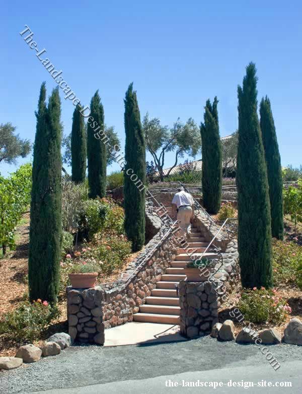 160 best images about italian garden ideas on pinterest for Italian landscape design