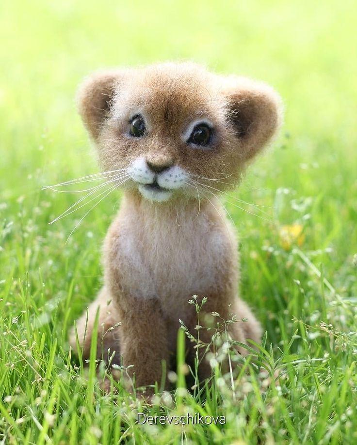 Süße Kleine Tiere