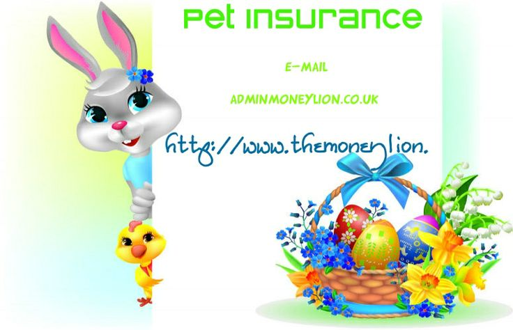 http://www.themoneylion.co.uk/insurancequotes/lifestyle/privatehealthinsuranceuk Health Insurance