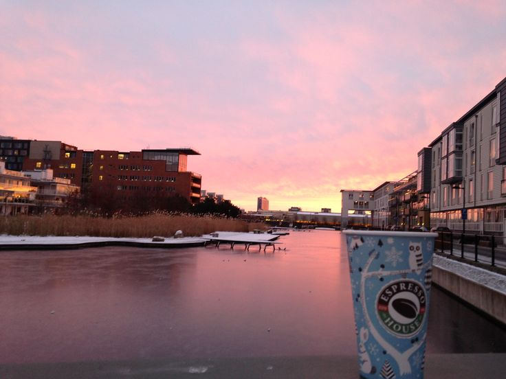 #Malmö #sea #sunset #colorfulsky #espressohouse #coffe
