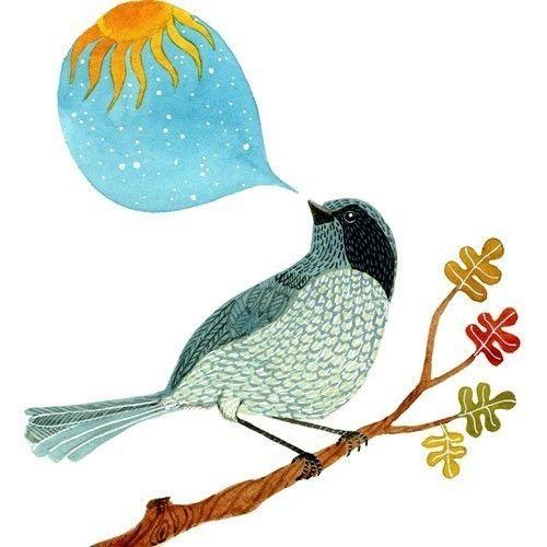 35 mejores imágenes de Bird! en Pinterest   Animales, Pajaritos y Aves