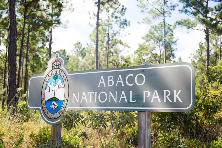 Abaco Bahamas National Park encompasses the south of Abaco Island. Visit Abaco Island by taking flight to bahamas with Bahamas Air Tours who fly from Florida to Bahamas. Their tours include the bahamas pigs tour visiting the swimming pigs. Copyright Bahamas Ministry of Tourism