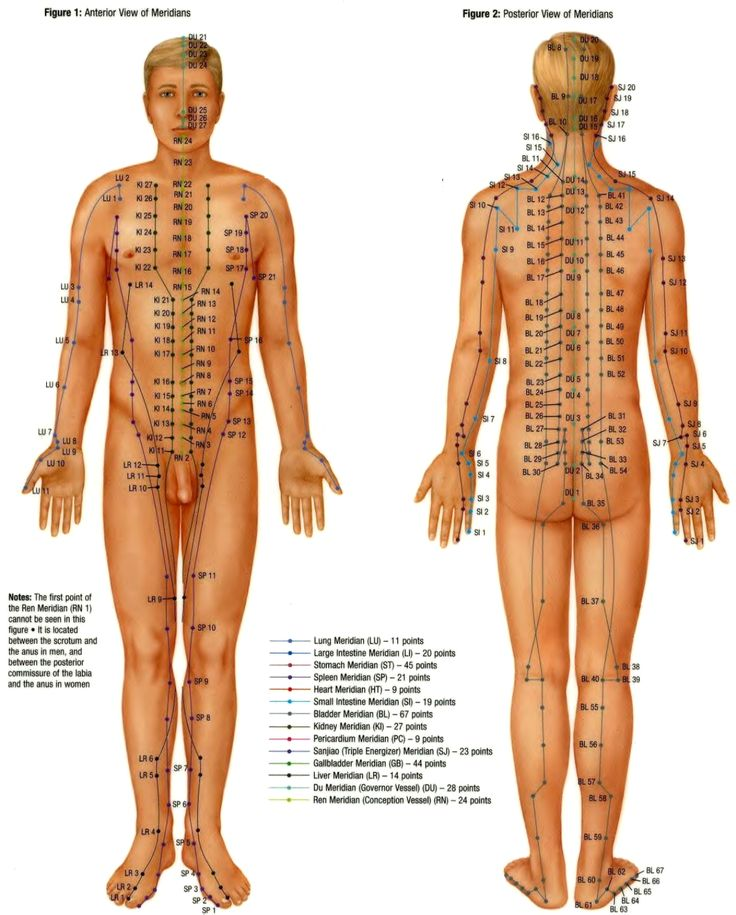 10 best accupressure images on pinterest acupuncture dragons pressure point diagrams full body front and rear ccuart Gallery