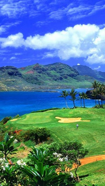 Hawaii Waterfront  I book travel! Land or Sea! www.getawaycruiseplanner.com