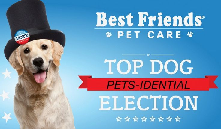 Enter your dog into the Pets-idential Election and they could win a year of doggy day care or boarding!!!  For more details visit http://twolittlecavaliers.com/2012/10/pets-idential-election-contest-sponsored-by-best-friends-pet-care.html