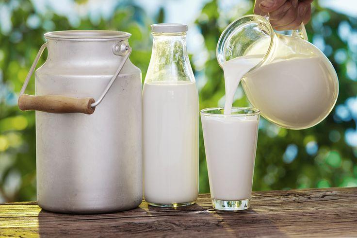 Fra i tipi di latte animale, il latte d'asina è il più simile al latte materno, fa bene alla salute di grandi e piccini, è straordinario per i benefici che apporta alla pelle. Patrizia Garofalo ha avviato una produzione di cosmetici naturali per donna e per pelli sensibili, disponibili su Artimondo Italia, che fa di questo latte il suo punto di forza. http://www.stilefemminile.it/loro-bianco-per-la-bellezza-delle-donne-artimondo/