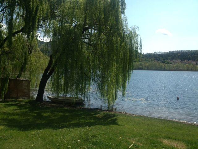 #Corsa mattutina intorno al lago baciati dal sole #revinelago #treviso #veneto #italy