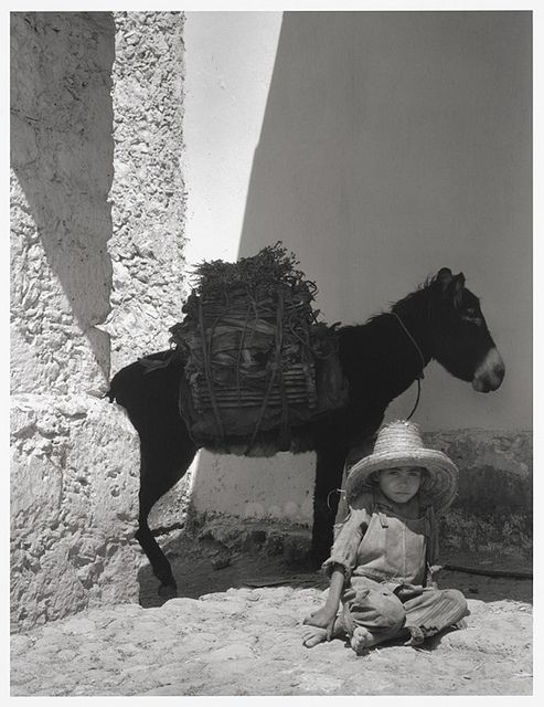 Boy and donkey, 1933, by Paul Strand