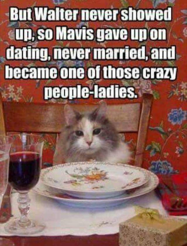 Dating an asian jokes on cats