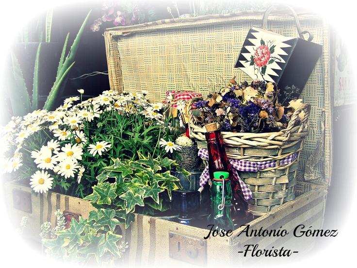 Recuerdos llenos flores...