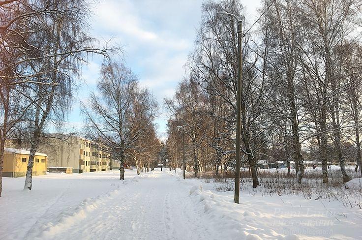 http://pienilintu.blogspot.fi/2018/01/kaunis-tammikuu.html