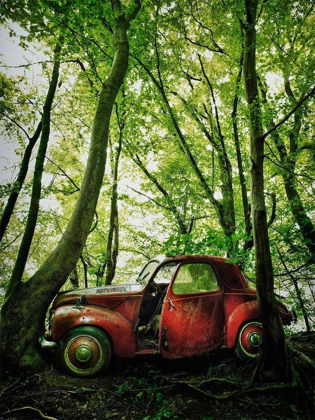 14 best DIETER KLEIN - Car Graveyard images on Pinterest ...