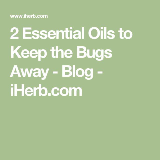 2 Essential Oils to Keep the Bugs Away - Blog - iHerb.com