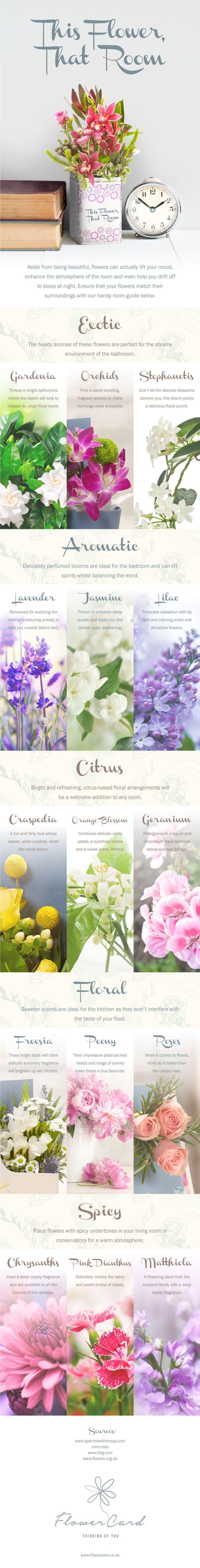 How To Choose The Perfect Flowers For Each Room In Your Home [Infographic]