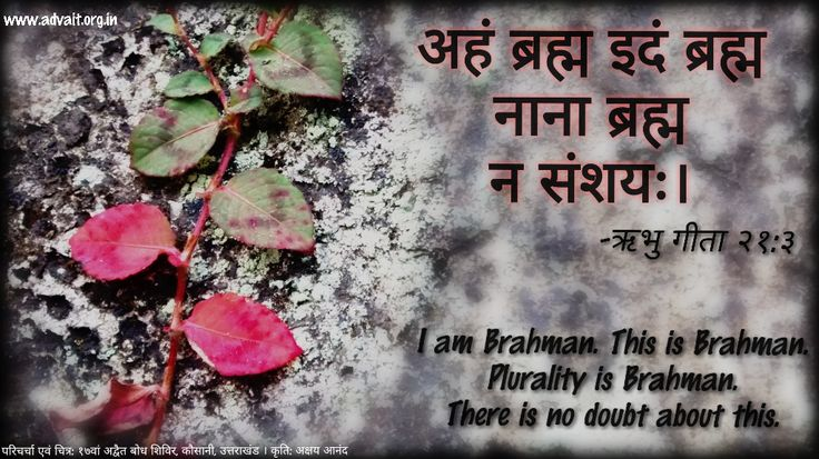 अहं ब्रह्म इदं ब्रह्म नाना ब्रह्म न संशयः | ~ ऋभु गीता I am Brahman.  This is Brahman. Plurality is Brahman. There is no doubt about this. ~Ribhu Gita  For more discourses on Ribhu Gita: YouTube: https://www.youtube.com/watch?v=d5Hjy4I5w1I Wordpress: http://prashantadvait.wordpress.com/2014/04/23/i-am-either-absolutely-everything-or-nothing-at-all/