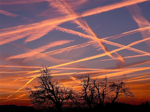 Contrails at Sunset - Artificial clouds