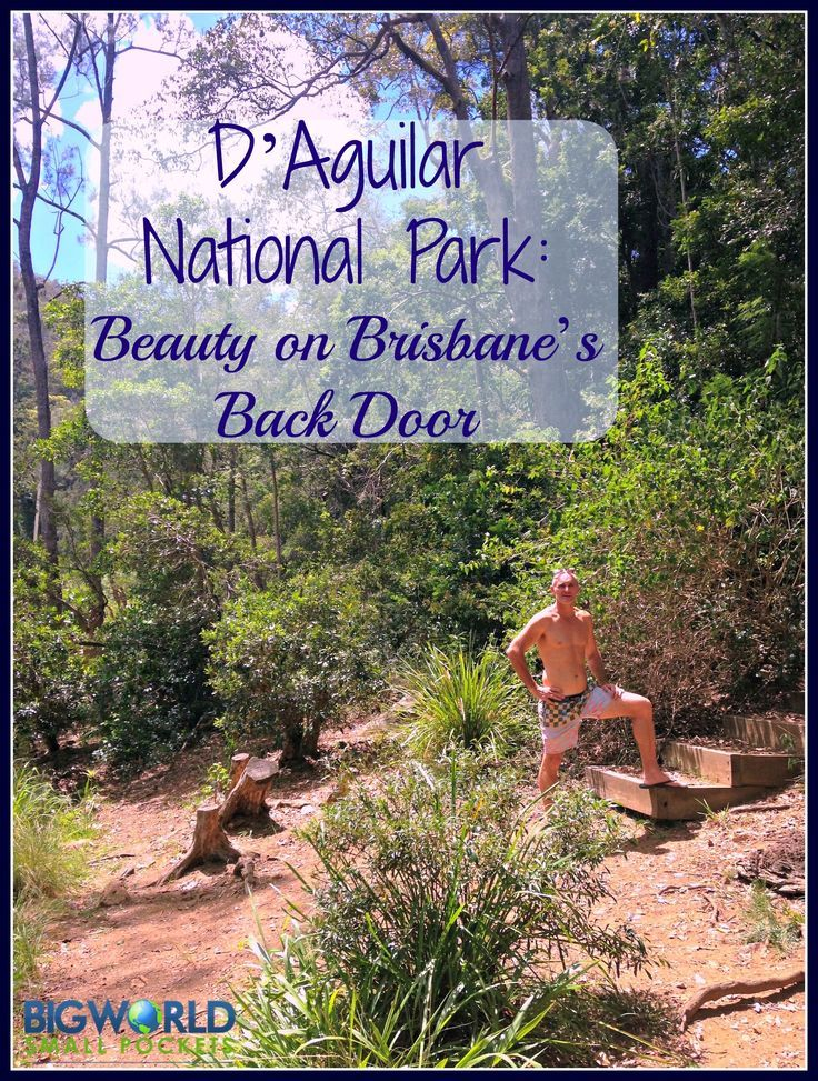 D'Aguilar National Park, only an hour from Brisbane, makes for a great weekend away from city life {Big World Small Pockets}