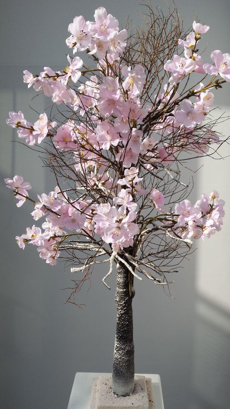 Bloesemboom bruioft - Roze Bloesemboom huren