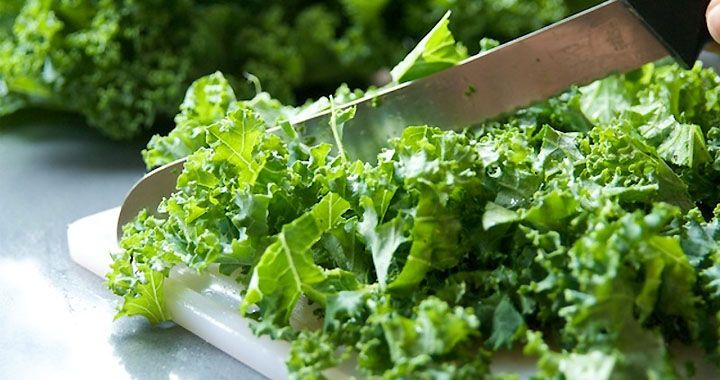 Kale: Your Friend With Benefits. Here's why the hype is totally worth it. #Kale #Health #Food #dfgiveaway