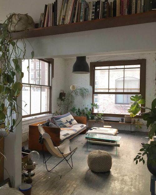 Laid back living in a small apartment. Plenty of houseplants bring the space alive. The shelf above the doorway adds interest and makes good use of space in a small flat.