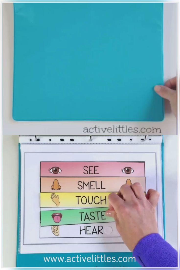 My Senses Exercise Binder for Preschoolers
