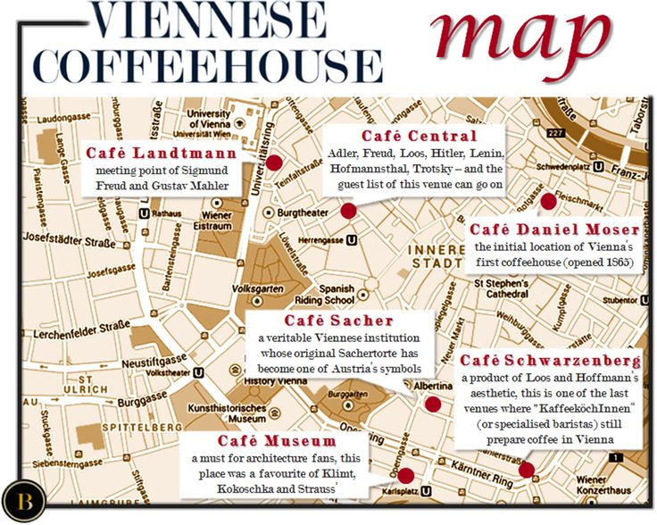 Vienna's Coffeehouse- my top 6