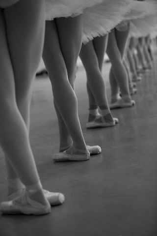 I think I'm interested in ballet for essentially the same reasons I am interested in physics.  Both involve dicipline...and beauty.