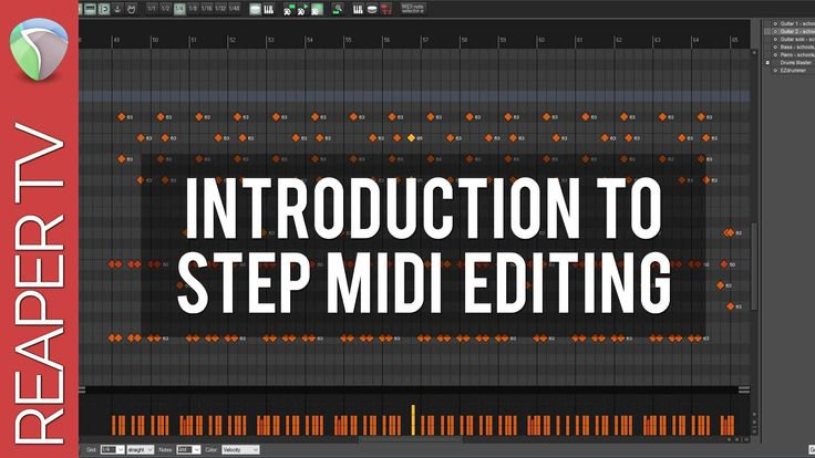 Midi Step Recording in Reaper DAW | Music production