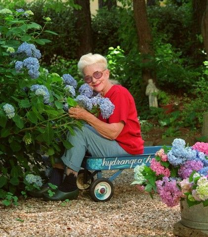 Penny McHenry is shown in her backyard with her 'Penny Mac' hydrangea. (Photo by: WILLIAM BERRY/Atlanta Journal-Constitution).  This photograph is the  property of The Atlanta Journal-Constitution (AJC).