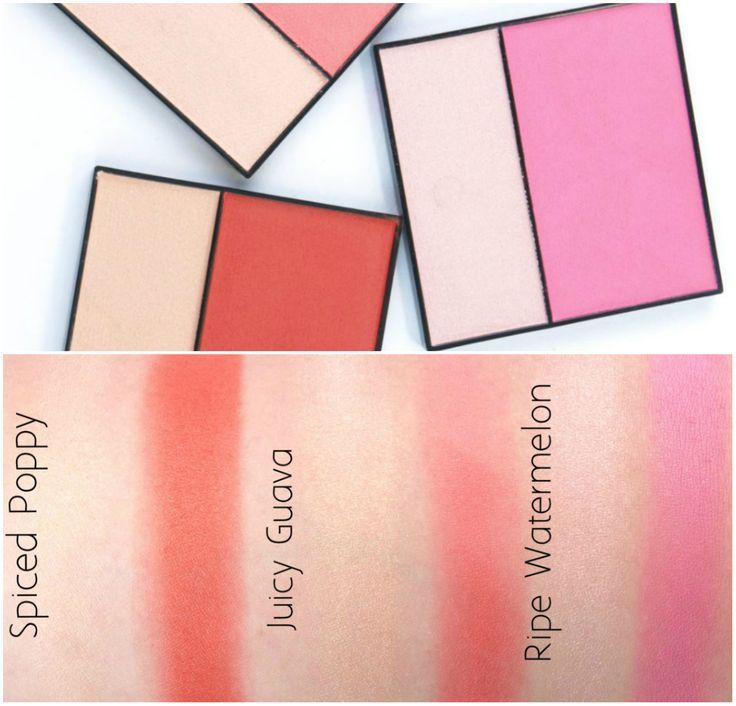Mary Kay Summer 2015 New Products: NouriShine Plus Lip Gloss & Mineral Cheek Duos Review and Swatches