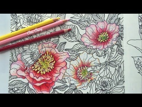 """The Peony"" - Coloring with Colored Pencils (Part 1) - YouTube"