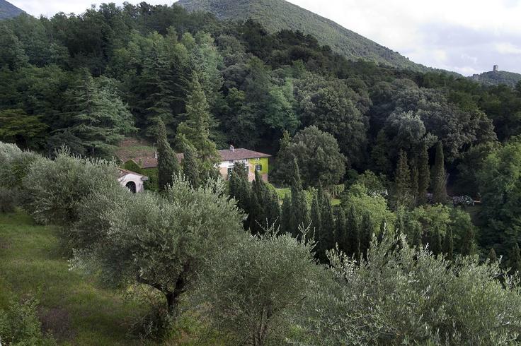 Villa Rinascimento_Pisa-Lucca