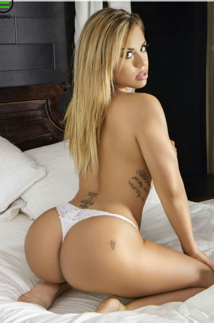 Amazin Amie Porn Minimalist 823 best delicias images on pinterest | curves, cute kittens and