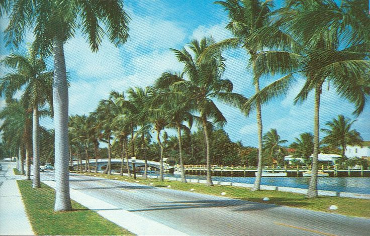 In Pictures Spring Break And Vintage On Pinterest: 17 Best Images About Vintage Fort Lauderdale, Florida On