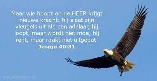 Afbeeldingsresultaat voor jeremia 29:11 nederlands