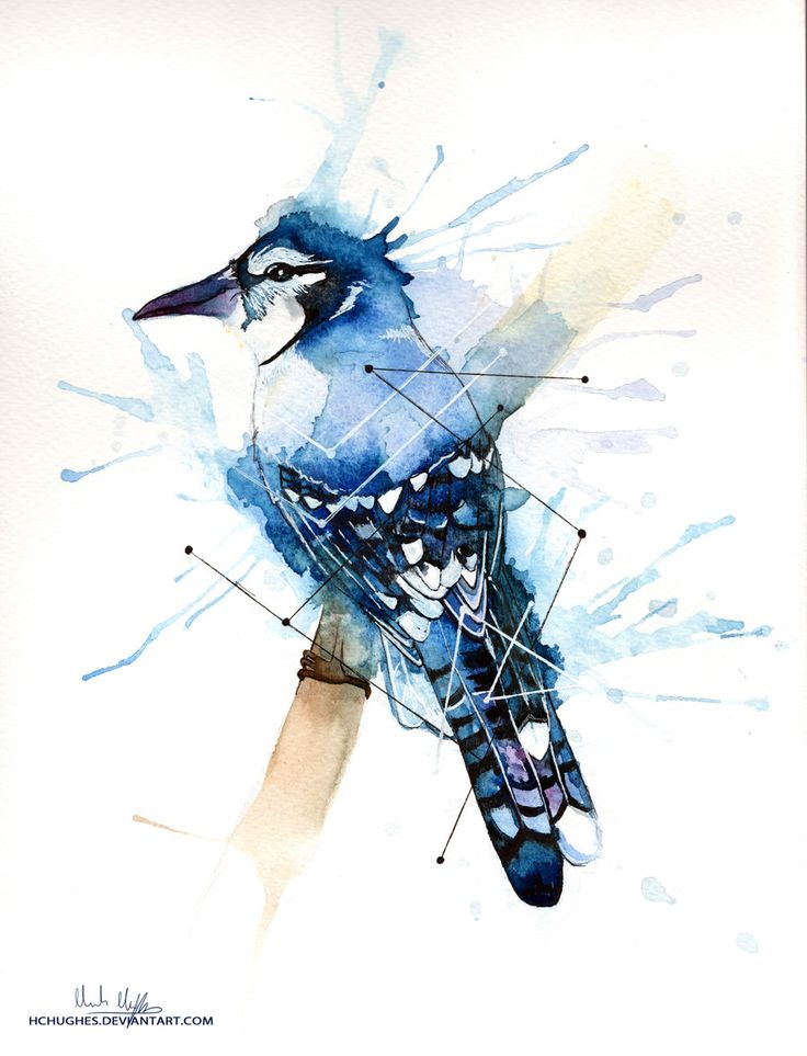 17 Best images about paint images for final on Pinterest ...