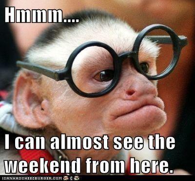 happy tuesday funny meme - photo #37