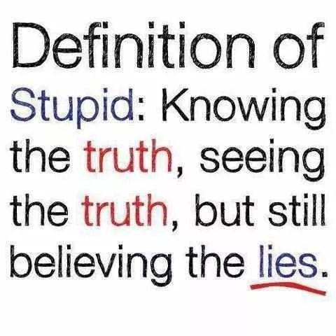 Definition of stupid