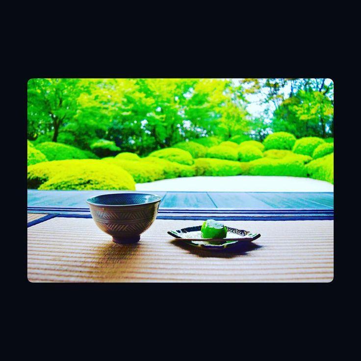 ドライブしてますん。 日本庭園きれいですん。 お抹茶&和菓子美味しすぎん。 彼女と来たいね。。。😭 …………いとおかし!!!! #insta #instagood #instalike #photo #genderles  #aaaoe__  #sweatm #happy #ootd #used #fashion #autumn #Japan #powderedgreentea #Japanesecake #いとおかし。