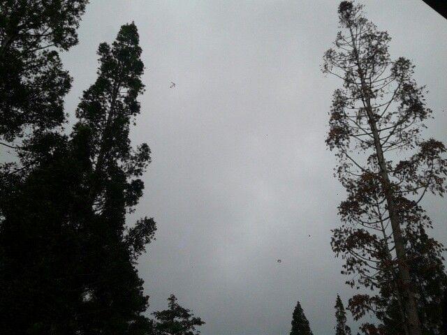 I wake up, hoping sunshine, but i got cloud. Cloudy.