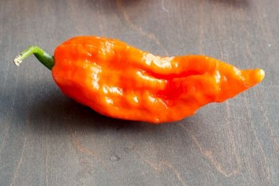 Bhut Jolokia Chili Peppers