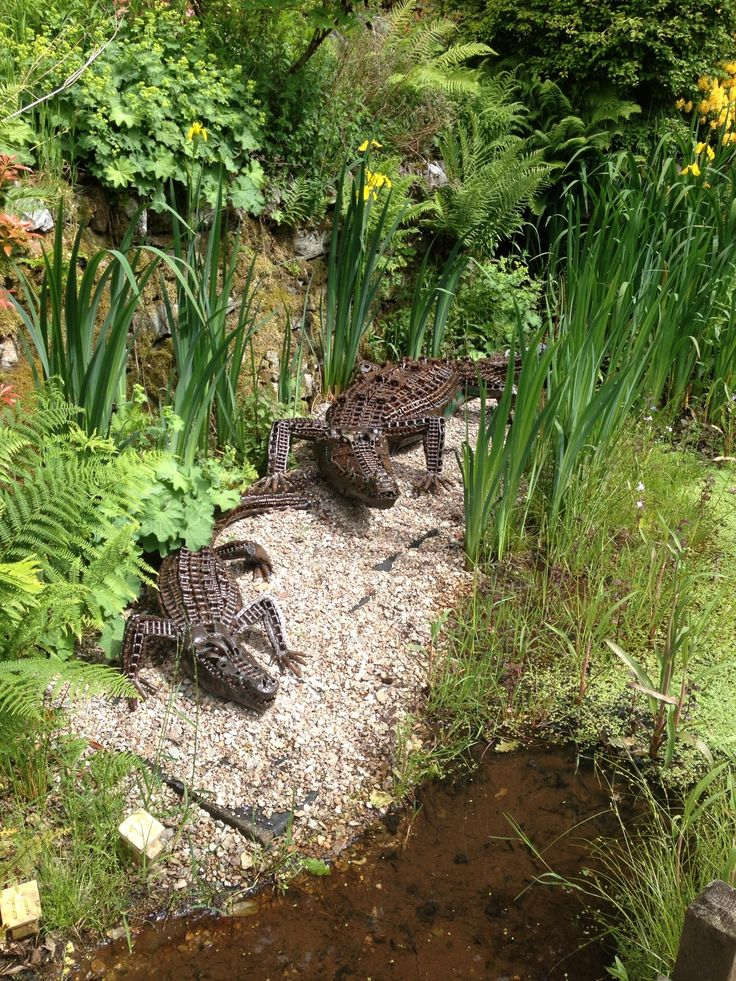Crocodiles lurking by the pond at Colintraive Sculpture Park Scotland